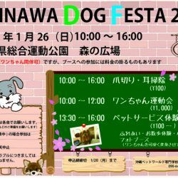 okinawa-dog-festa